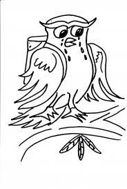 Vogel Meneer De Uil Kleurplaten