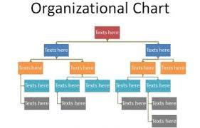 Org Chart Template Google Docs Organizational Chart Template Google Docs Chartreusemodern Com