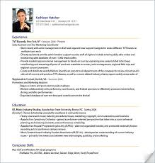 Example Of Professional Resume Format