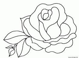 Coloriage Fleur De Rose Dessin With Dessin Des Fleurs A Imprimer