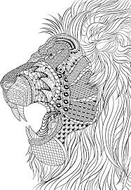 Small Picture Lion Zentangle Animal Coloring Pages for Adults Pinterest