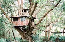 The Best Treehouses In NSW You Can Stay In  Daily TelegraphTreehouse Accommodation Nsw
