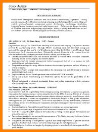 8 Resume Summary Sample By Nina Designs
