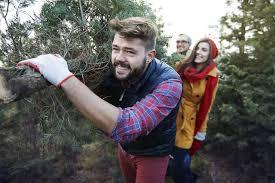 Tree Cutting  US Forest ServiceChristmas Tree Cutting Nj