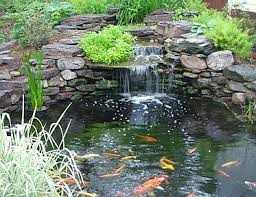 Small Picture Backyard Waterfalls Ideas Backyard Landscape Design