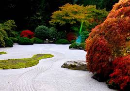 like with a brush of an artist the masters of zen gardens add bold color spots introducing the living japanese maple trees in their composition