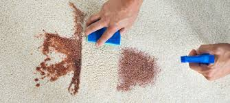 You can remove coffee stains from carpet successfully (and inexpensively) using some supplies you already have at your home. How To Get Coffee Stain Out Of Carpet Simple Guide