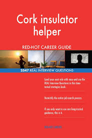Physical Design Interview Questions Book Cork Insulator Helper Red Hot Career Guide 2547 Real