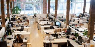 The Ideal Office Floor Plan, According to Science - Bloomberg