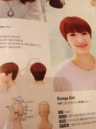 アジアンよしなし日記 韓国女子に人気の流行ヘアスタイル