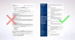 Professional Resume Examples 2013 Fascinating Example Of A Professional Resume Lovely Example A Professional