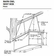 how to build a barn owl nest modern