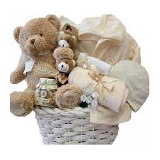 little charm organic baby basket