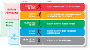 Understanding The Role Our Heart Rate Plays During Exercise