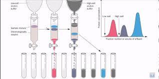 Ion Exchange Chromatography Thin Layer Chromatography Ion