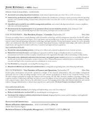 Vp Finance Resume Examples - Examples of Resumes
