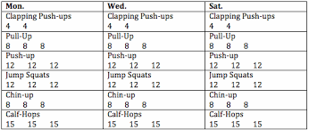 Pull Up Workout Chart Beginners Pull Up Workout Pdf