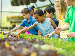Community activities for teenagers | Raising Children Network