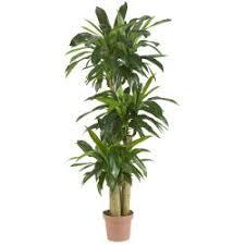 corn stalk dranaena silk plant real touch artificial plants for office decor