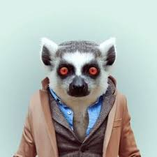 zoo animals in clothes. Beautiful Animals Barcelonabased Photographer Yago Partal Created A Hilarious Photo Series  Called U0027Zoo Portraitsu0027 Showing Various Animals Dressed Like Humans Intended Zoo Animals In Clothes O