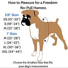 Freedom No Pull Dog Harness Sizing Chart