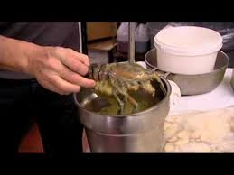 kitchen nightmares episode 3 01 spanish pavillion clip 1