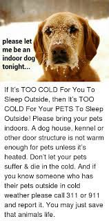 If your dog is still not willing, try repeating these steps again. Please Let Me Be An Indoor Dog Tonight If It S Too Cold For You To Sleep Outside Then It S Too Cold For Your Pets To Sleep Outside Please Bring Your Pets Indoors