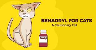 Benadryl For Cats A Cautionary Tail Simple Wag