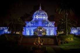 Holiday Lights At Sf Conservatory Conservatory Of Flowers Night Bloom Featured In
