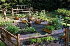 new york deer fence designs landscape traditional with trellis gardening accessories raised bed