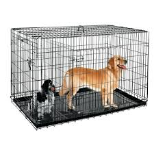 petsmart dog pen pensacola adoption outdoor kennels large playpen