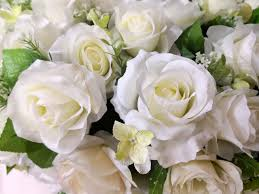 sublime and elegant white rose meaning