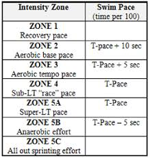 How To Determine Your Swimming Pace Zones
