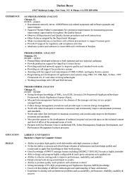Programmer Analyst Resume Samples Velvet Jobs