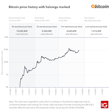 Bitcoin Distribution Chart Bitcoin Halving 2020 All You Need To Know