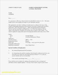 19 Pdf Resume Template | Kiolla.com