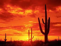 Resultado de imagen para desiertos en el alma