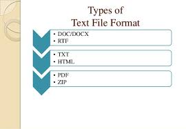 online format file formats and its types