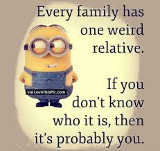 Funny Quotes About Family Cool 48 Best Family Minion Quotes