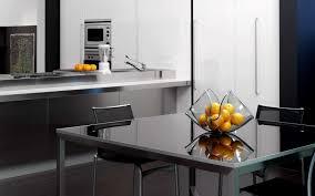 Kitchen Interior Furniture Amazing Natural Modest Kitchen Interior Square Glass