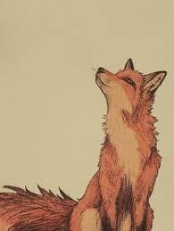 593 Best <b>foxes</b> images | <b>Fox</b>, <b>Foxes</b>, <b>Fox</b> art