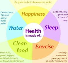 Healthy Living Chart Image Result For Healthy Lifestyle Chart Health Fitness __