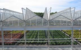 durable and customized steel and aluminum greenhouses from the small expansion to the commercial grower modular construction makes extensions and
