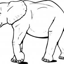 Small Picture Printable Elephant Coloring Pages Printable For Pages adult