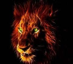 Danger Lion Wallpaper Hd Download