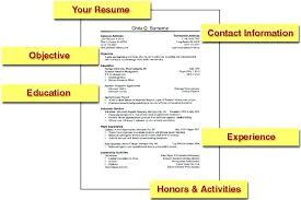 Resume Outline Examples Basic Resume Outline Best Resume Format