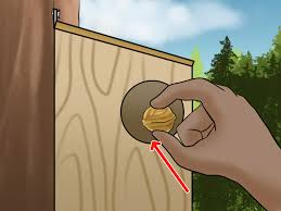 how to build a squirrel house