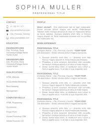 Free Modern Professional Resume Templates Radiodignidadorg