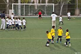 futbol base, entrenamientos, benjamines, prebenjamines, alevines, alevin, prebenjamin, benjamin