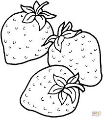 10 Fruit Kleurplaten Printen Krijg Duizenden Kleurenfotos Van De